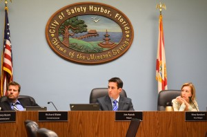 Safety Harbor Mayor Joe Ayoub announced on Thursday that he would seek a second term in office.