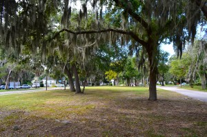 A developer plans to build six single-family homes on this half-acre parcel in downtown Safety Harbor.