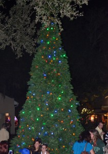Safety Harbor's Christmas tree.
