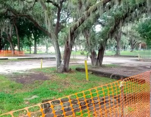 Trees marked for removal at the Safety Harbor Spa.