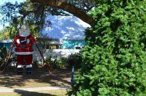 The 2014 Safety Harbor Christmas Tree Lighting Ceremony takes place Friday, Dec. 5 at 6:00 pm.