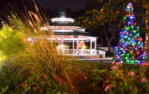The holiday season in Safety Harbor contains a special charm, thanks to the city's quaint downtown district and a sleighful of fun, traditional events.