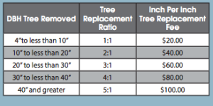 The Safety Harbor tree ordinance replacement fee schedule.