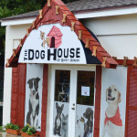 The Dog House of Safety Harbor is located in the back of 737 Main St.