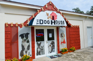 The Dog House of Safety Harbor.