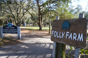 Folly Farms is a new passive parkspace in Safety Harbor.