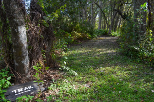 The entrance to the nature trail at Folly Farm Nature Preserve in Safety Harbor.