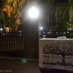 Smart Growth Safety Harbor recently helped shine more light on the historic Baranoff oak tree.