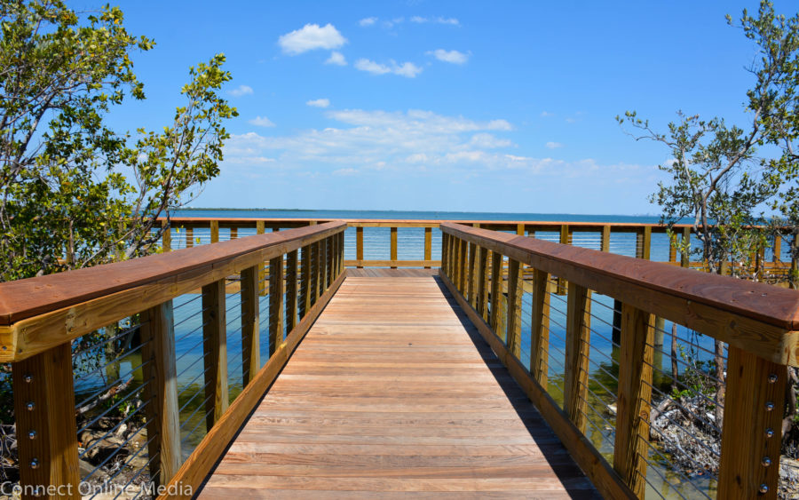 The boardwalk section of Safety Harbor's Waterfront Park opened to the public last Friday, and the shoreline attraction offers a serene experience amid stunning natural beauty.
